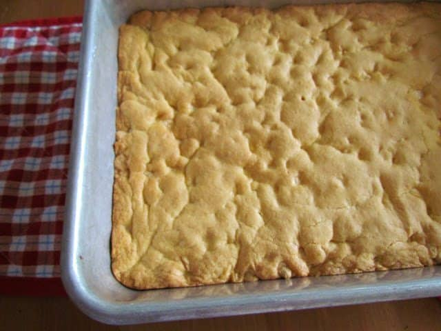 finished baking dish blondies