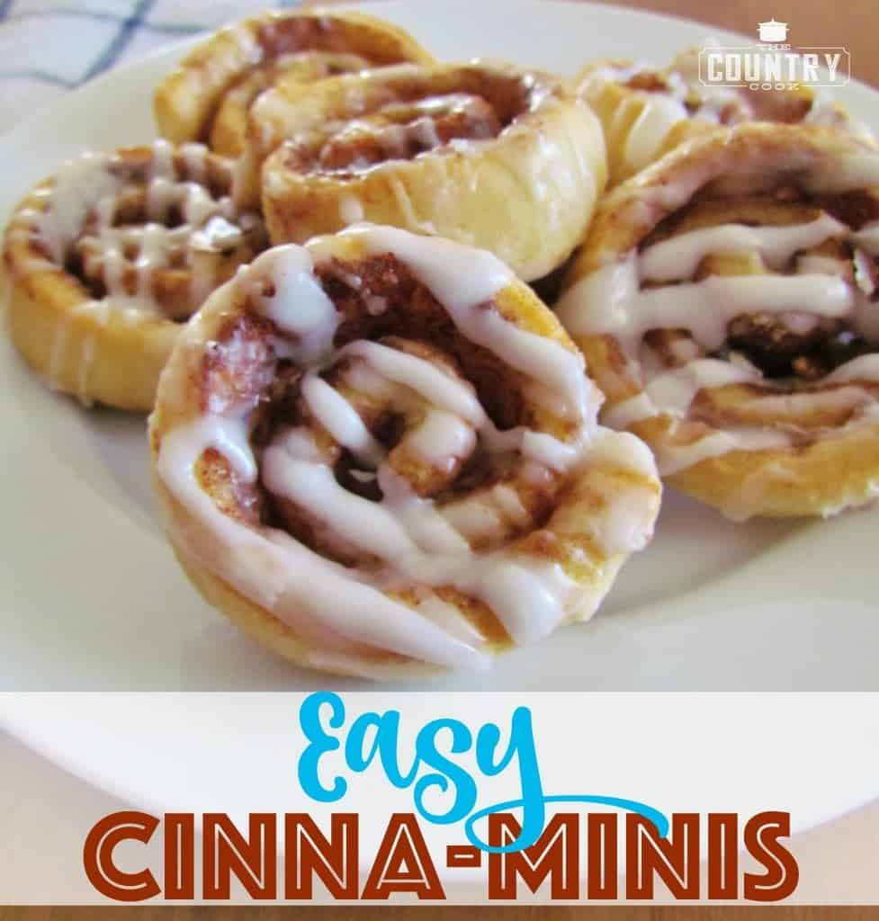 Easy Cinna-Minis recipe from The Country Cook