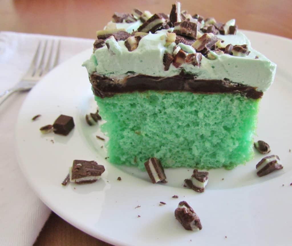 grasshopper-cake-45