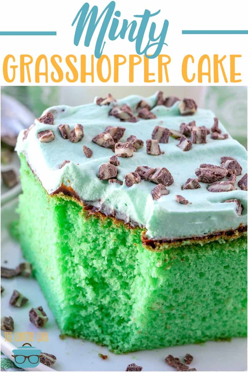 Grasshopper Cake is a green, minty cake with chocolate fudge and whipped cream topping sprinkled with Andes Creme de Menthe pieces. So good!