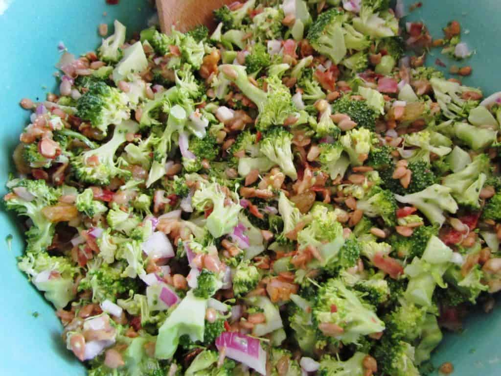fresh broccoli florets, diced red onions, bacon, creamy mayonnaise dressing stirred together with a wooden spoon in a plastic blue bowl, stored in refrigerator