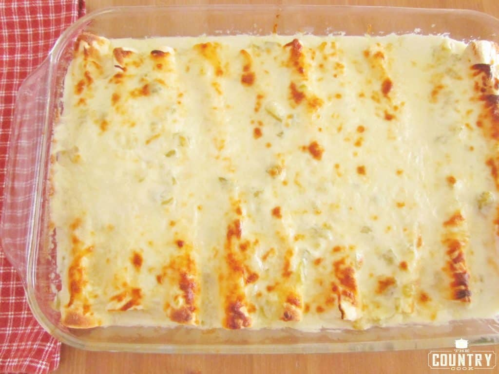 Creamy Cheesy Chicken Enchiladas with white sauce, finished