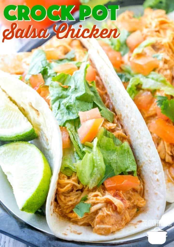 Crock Pot Shredded Salsa Taco Chicken recipe from The Country Cook