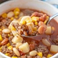 The Best Brunswick Stew recipe