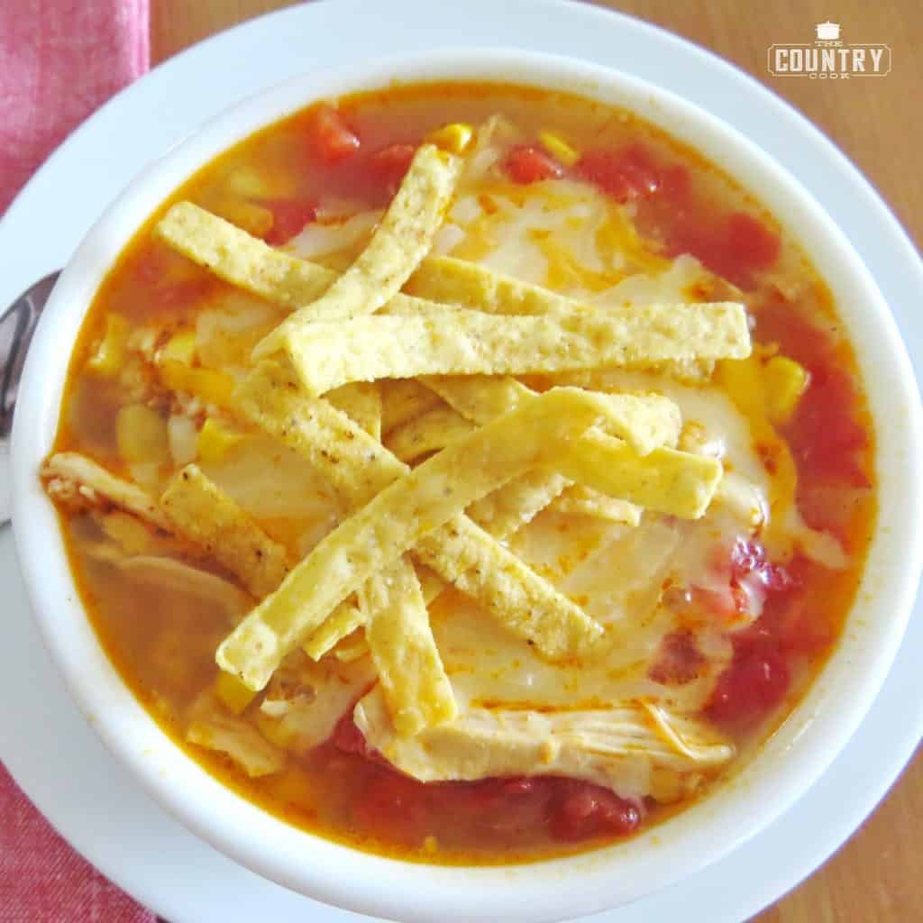 bowl, chicken tortilla soup with cheese