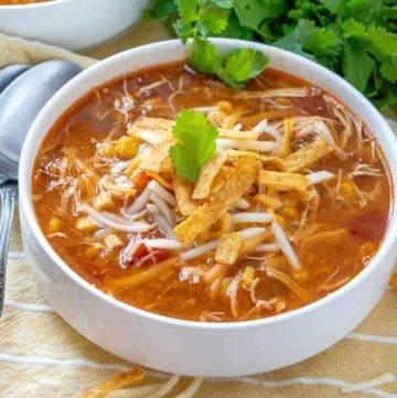 Crock Pot Chicken Tortilla Soup recipe from The Country Cook
