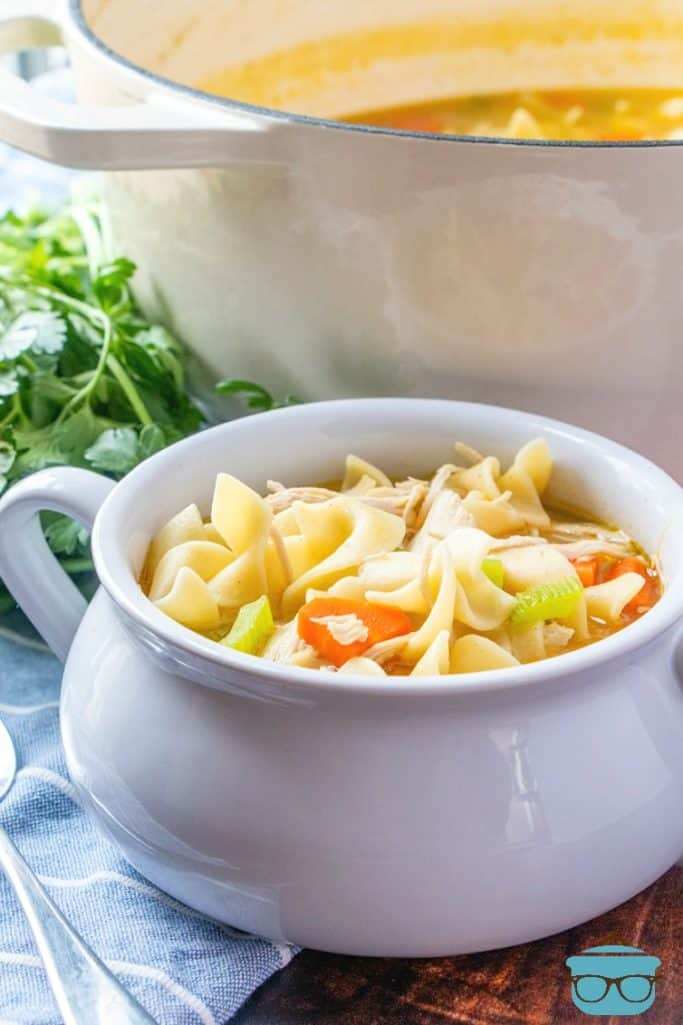 Easy Chicken Noodle Soup recipe made with chicken breasts and egg noodles, served in a white bowl with stock pot in the background
