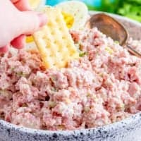 The Best Ham Salad recipe