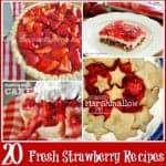 20 Fresh Strawberry Recipes