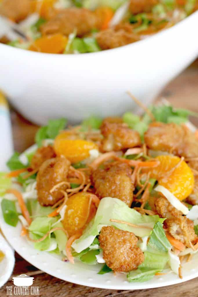 Oriental Chicken Salad with mandarin oranges and chow mein noodles
