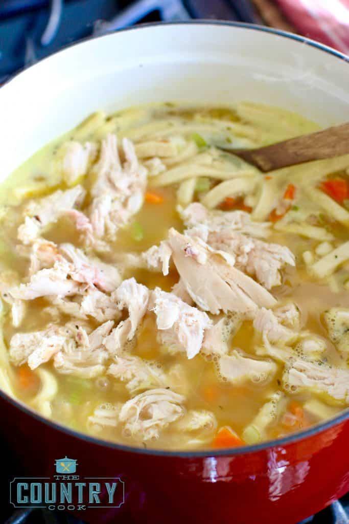 chicken-noodle-stew-copyright