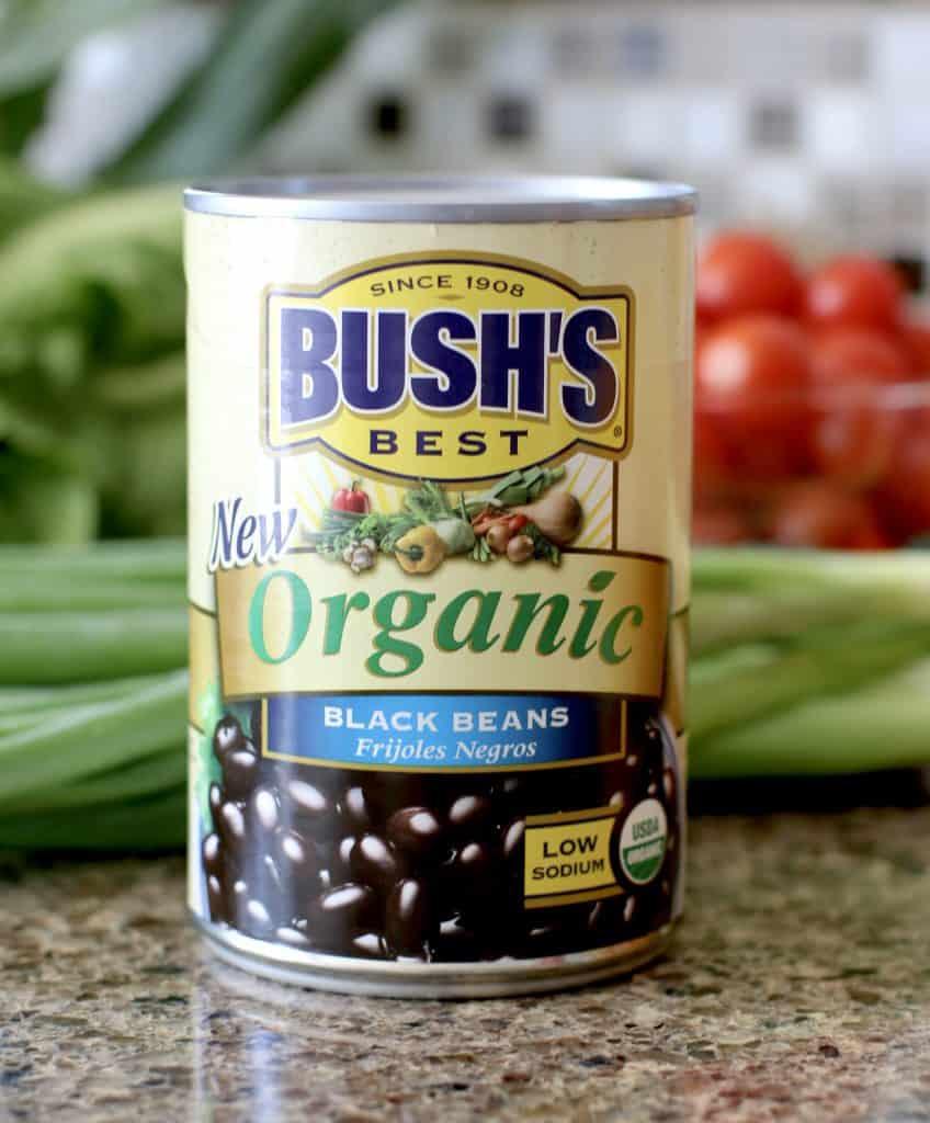 BUSH'S Best Organic Black Beans