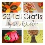 20 Fall Crafts for Kids