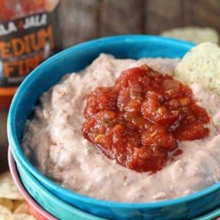 Salsa Chicken Dip