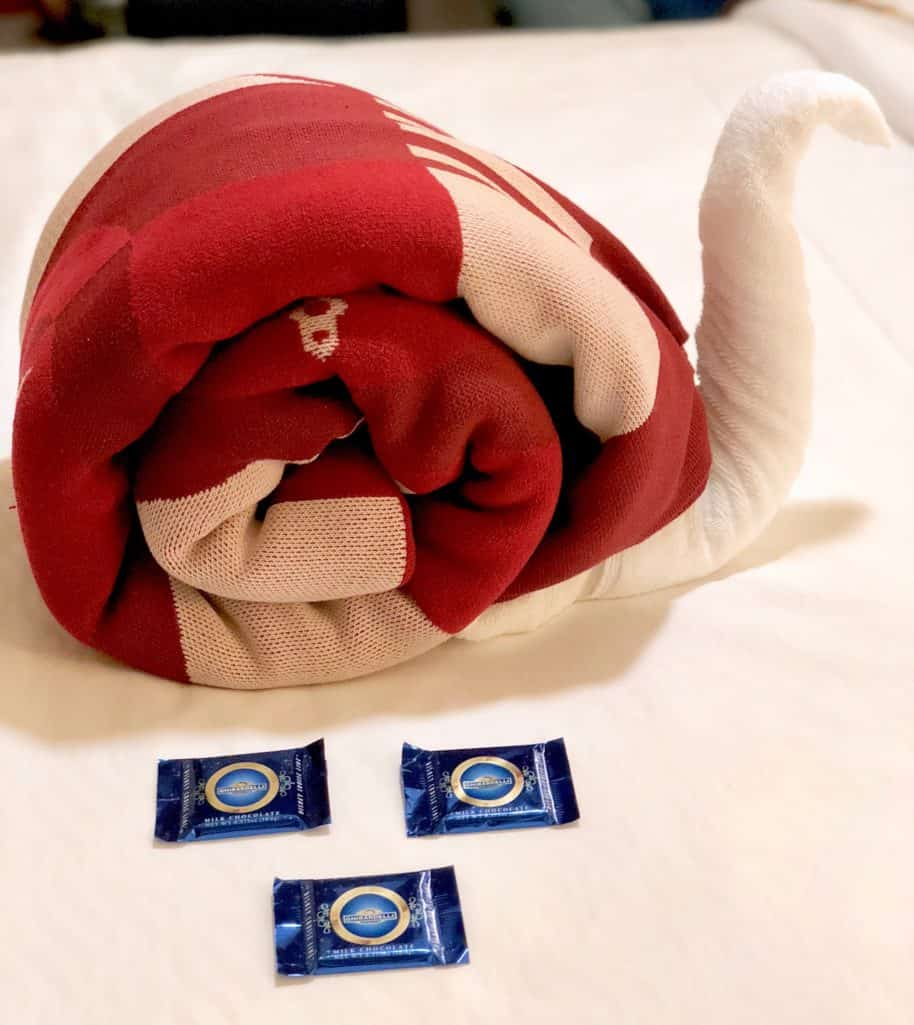 Snail towel creation