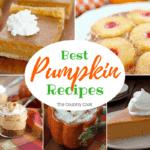The Best Pumpkin recipes