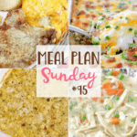Chicken Noodle Stew ~ Meal Plan Sunday #95