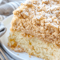 HOMEMADE DOUBLE CRUMB CAKE