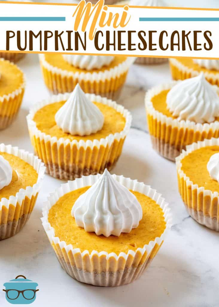 Pumpkin Mini Cheesecakes recipe from The Country Cook, shown displayed on a white cake plate and topped with dollops of whipped cream