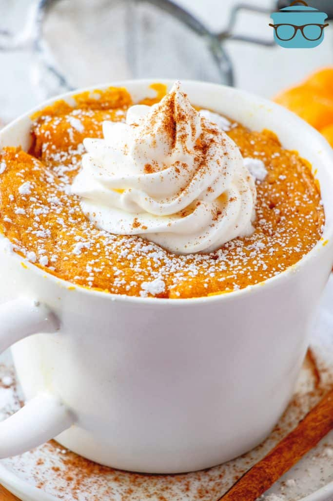 PUMPKIN MUG CAKE topped with whipped cream and ground cinnamon with a cinnamon stick set to the side