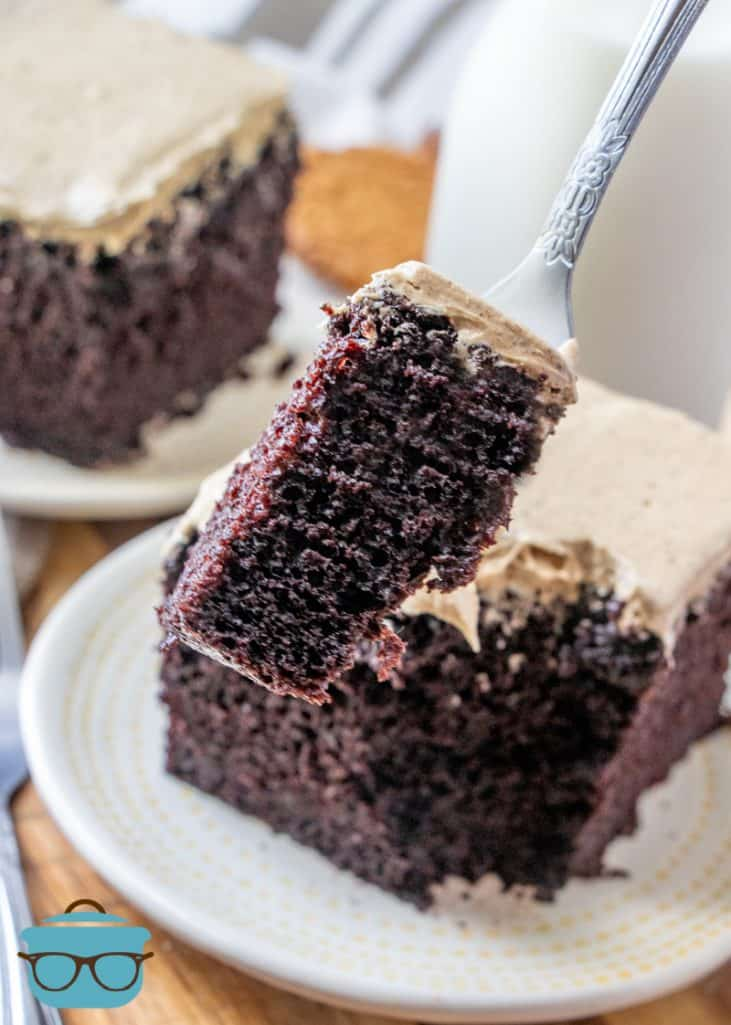 Dark Chocolate Cake with Gingerbread Frosting, forkful of cake