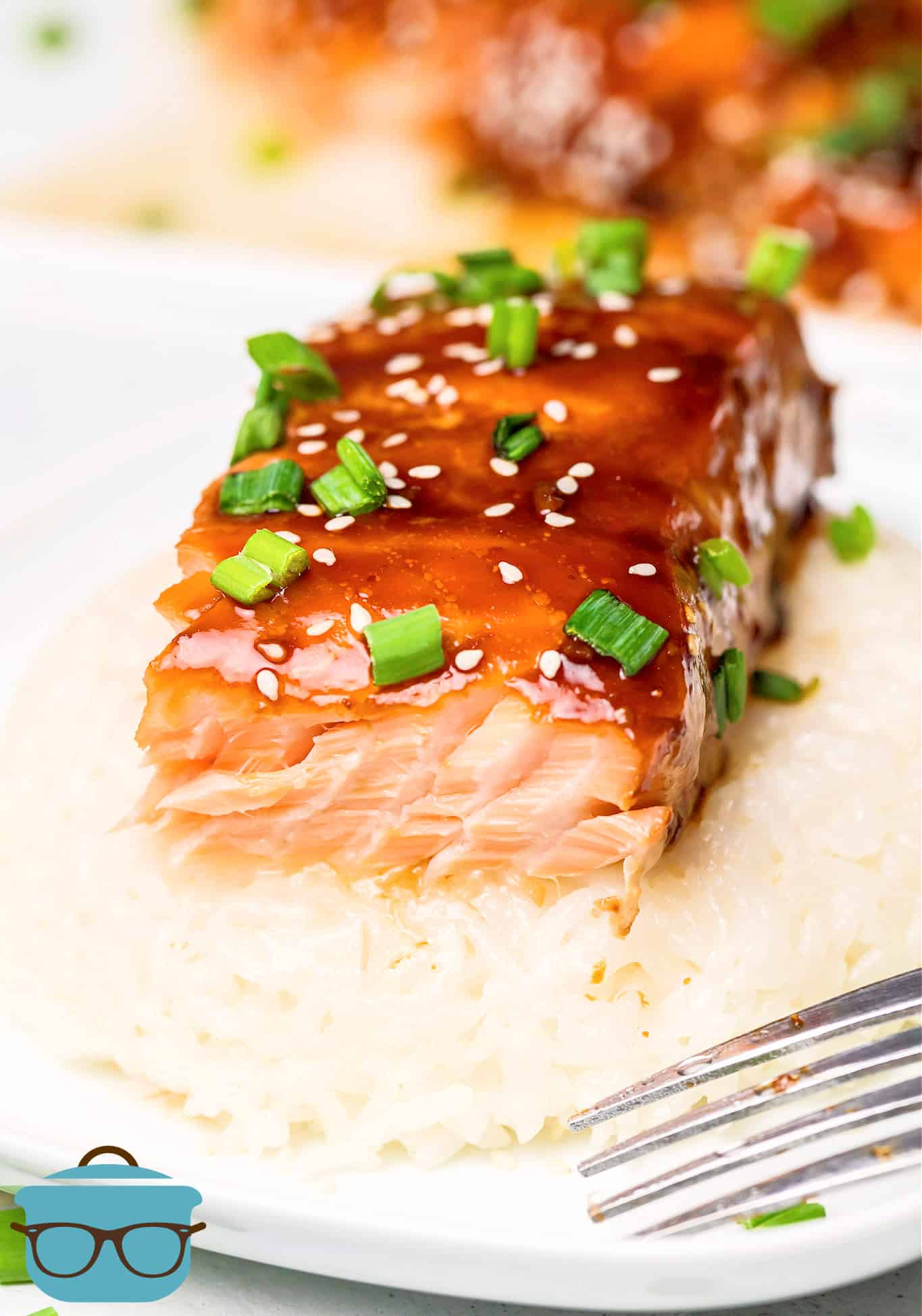 Slice of salmon over bed or rice topped with sesame seeds and green onions.