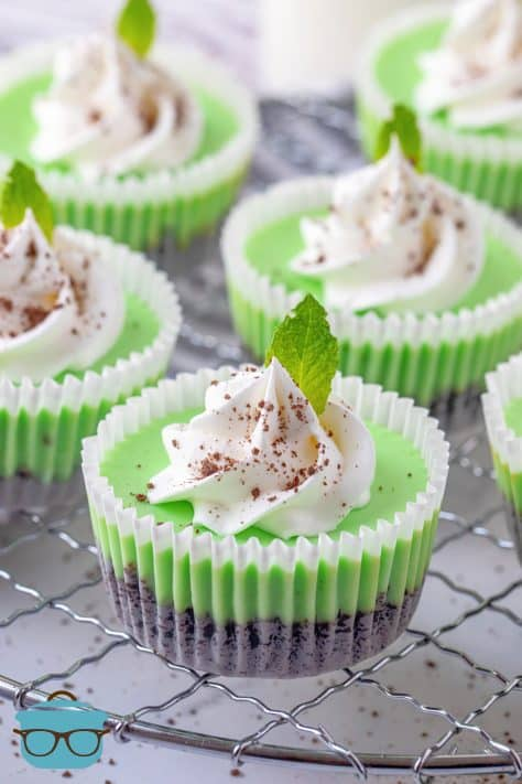 Mini Mint Chocolate Cheesecakes topped with whipped topping and mint leaf on wire rack