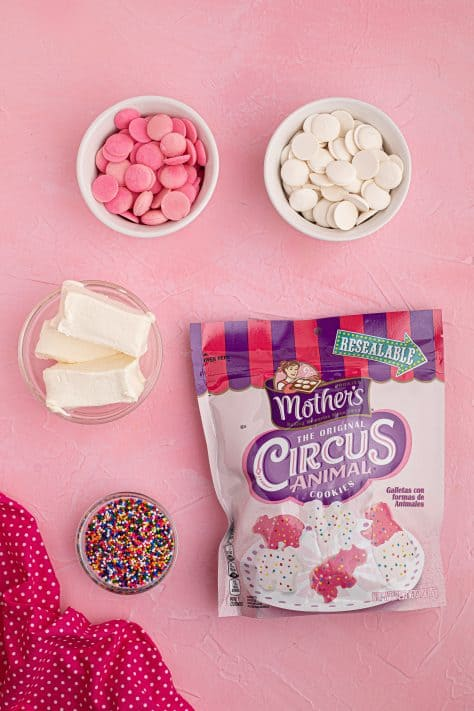 Ingredientes necessários para fazer bolas de biscoito de animais de circo