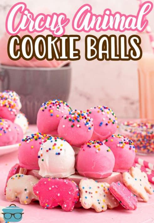 Bolas de biscoito de animais de circo empilhadas no prato com biscoitos em volta