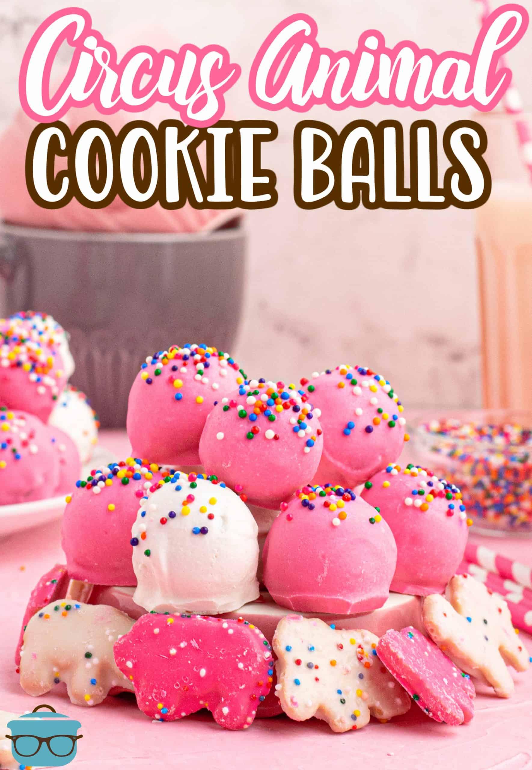 Quer se sentir um pouco nostálgico com um toque diferente?  Então você precisa fazer essas bolas coloridas de quatro ingredientes de Circus Animal!  Fácil, gostoso e super divertido!