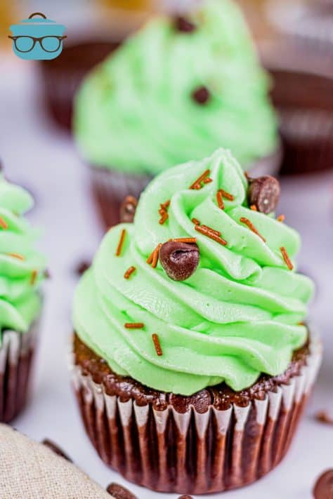 Overhead angle of Mint Chocolate Chip Cupcakes