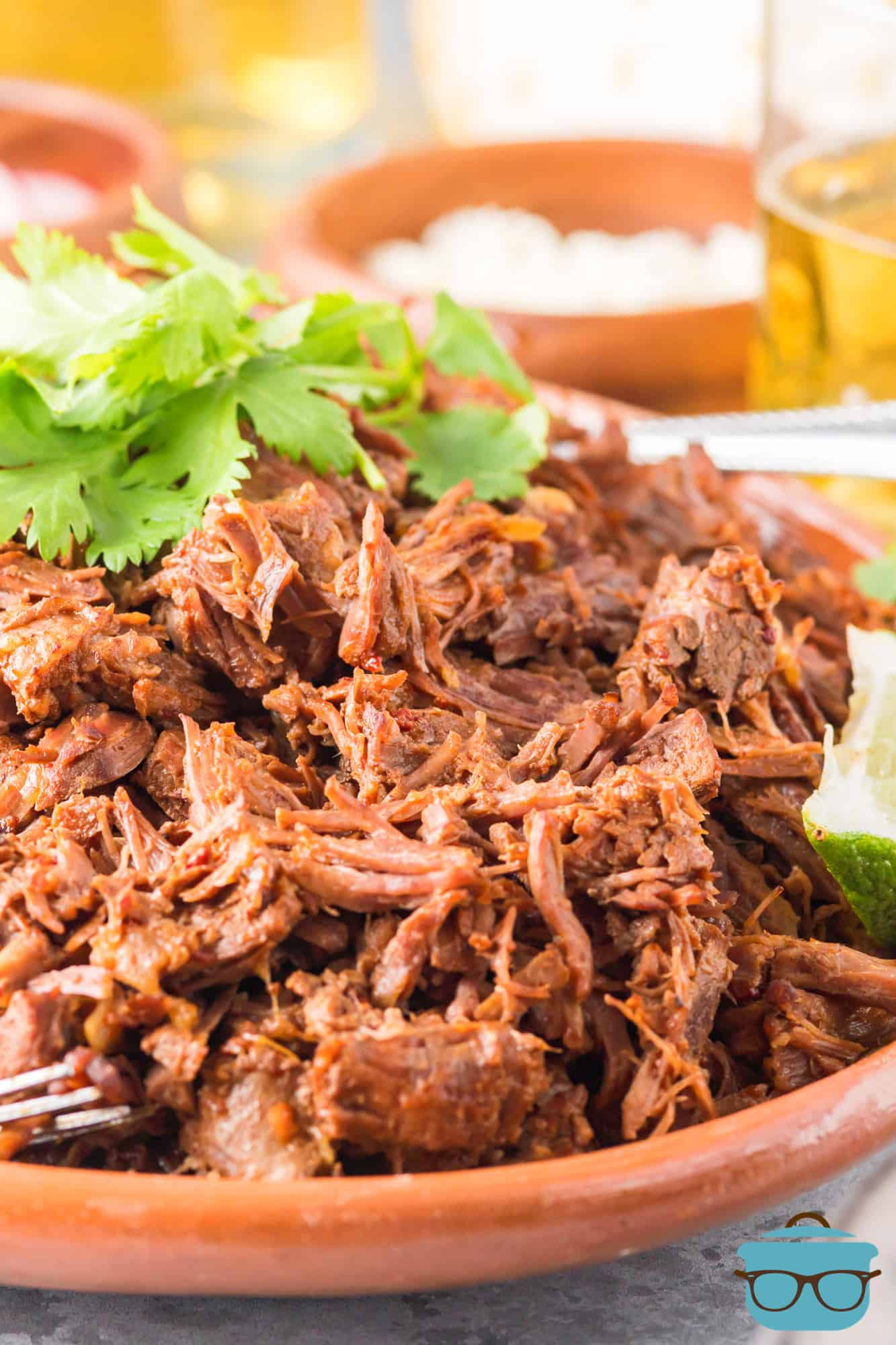 Close up of Instant Pot Barbacoa on plate.