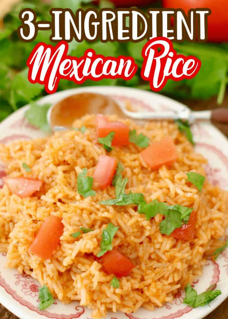 Mexican Restaurant Rice recipe from The Country Cook, rice shown on a round plate