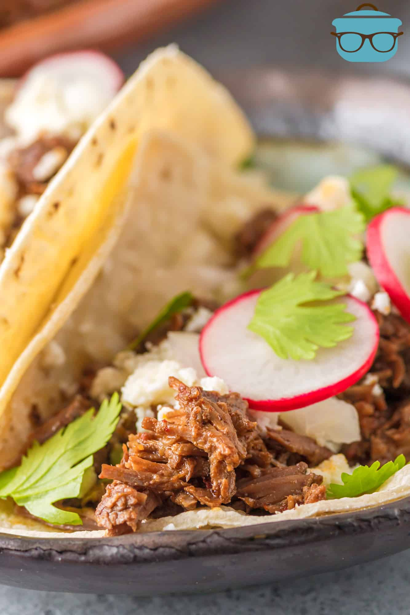 Barbacoa in taco shell with radishes and onions.