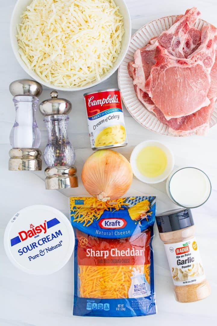 oil, salt, pepper, garlic powder, bone-in center thick cut pork chops, sour cream, cream of celery soup, milk, shredded hash browns, onion, shredded cheddar cheese
