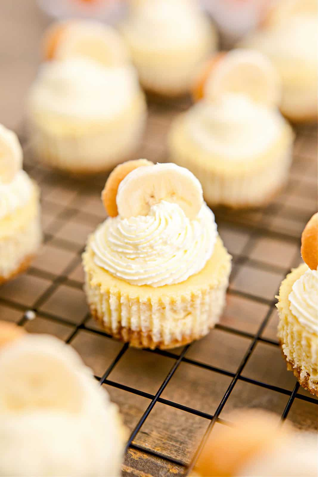 Mini Banana Pudding Cheesecakes on wire rack decorated with swirled whipped cream and slices of banana and a Nilla wafer.