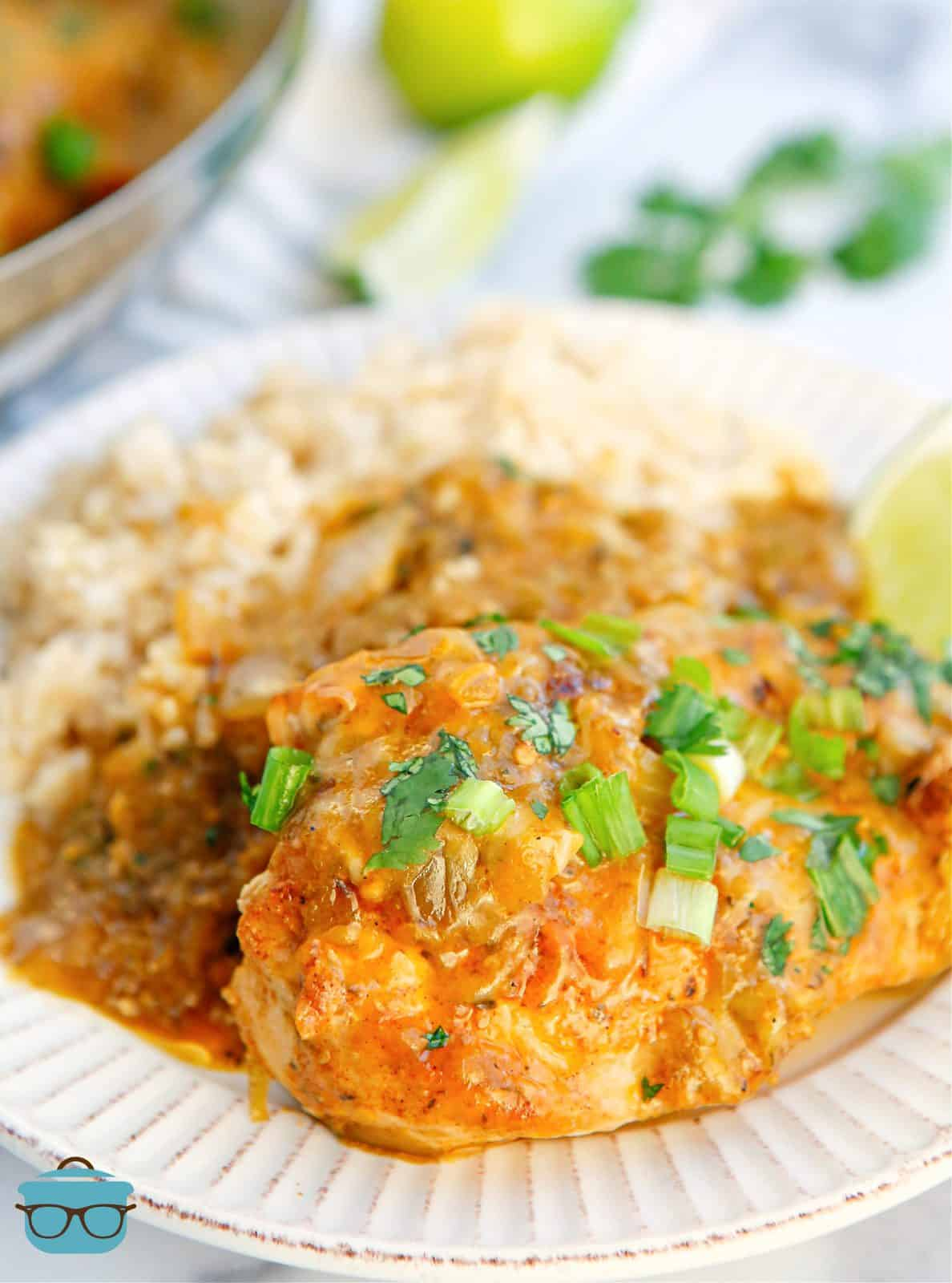 Salsa Verde Chicken on plate with rice.
